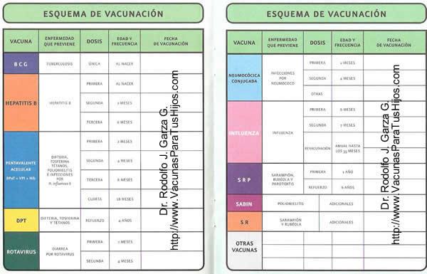 Cartilla De Vacunacion 2016 | Calendar Template 2016