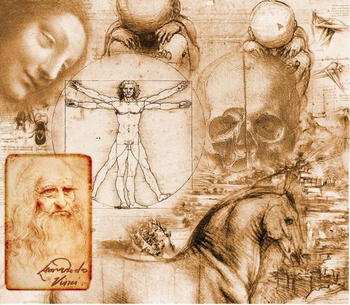 Seres vivos anatomia e fisiologia humana